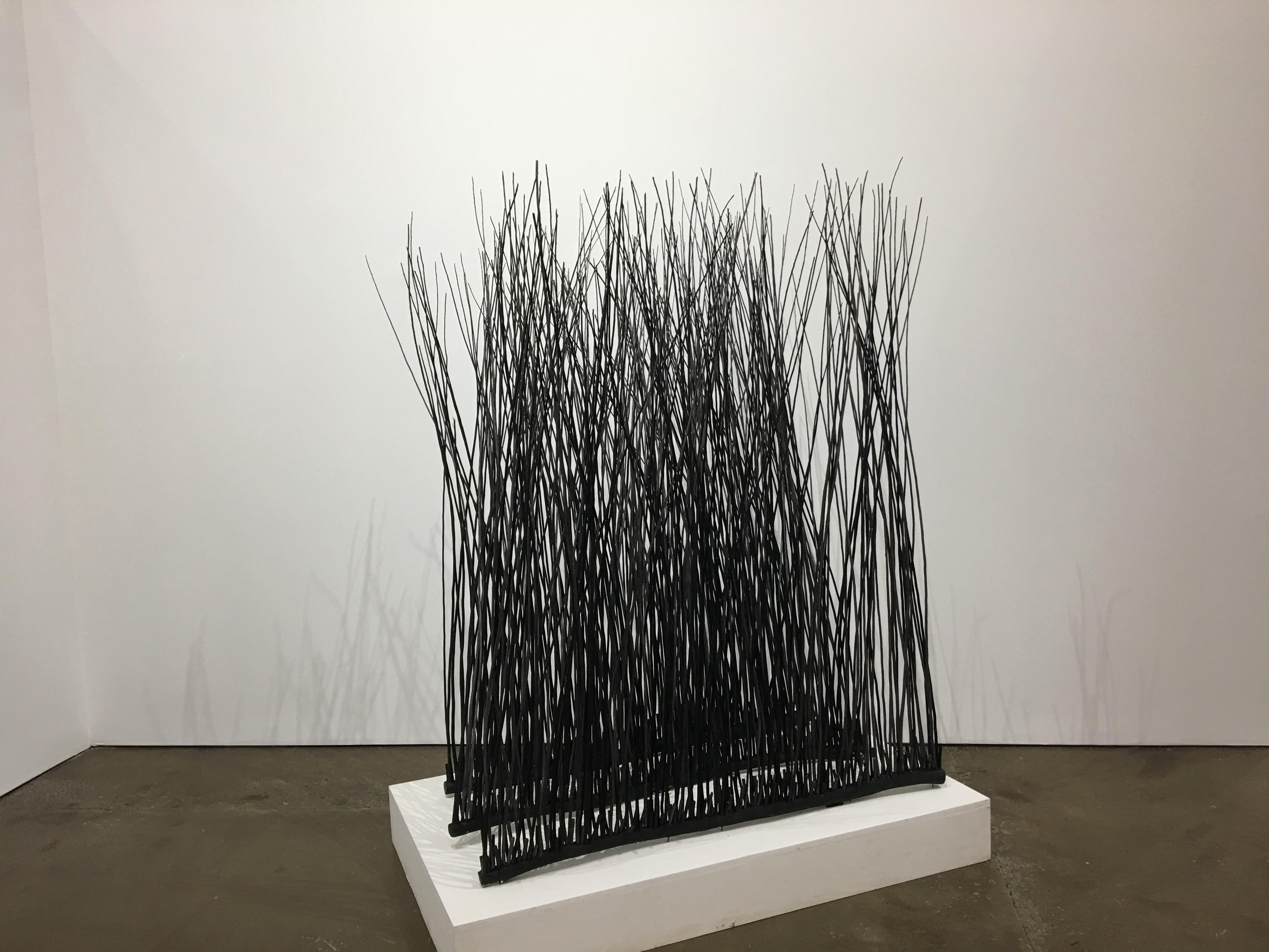 """""""Looking at Woods"""" by Barbara Korman"""