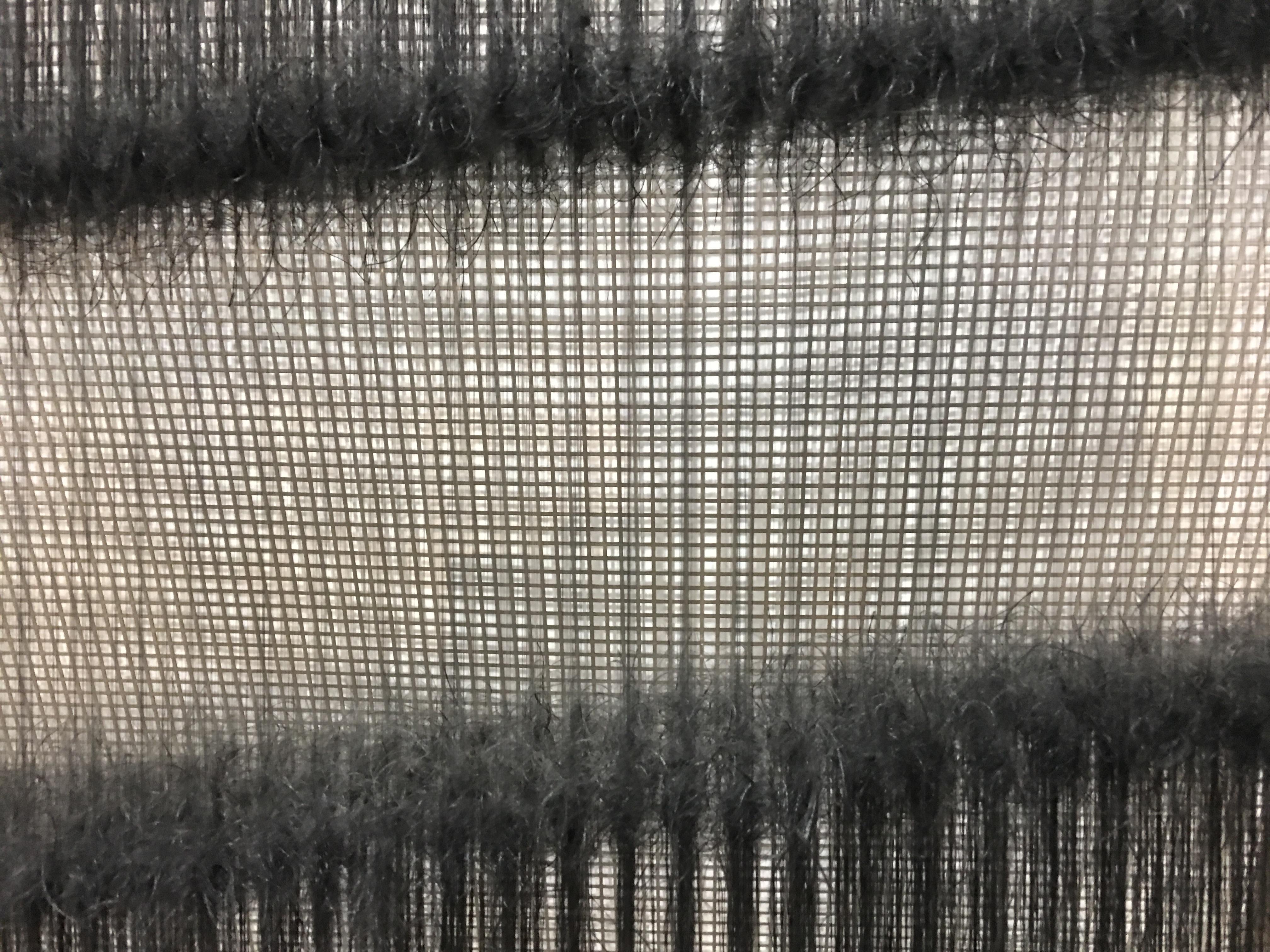 """Detail of """"Revinniir Zagaizz N69, 1(21)"""" by Brigitte NaHon"""
