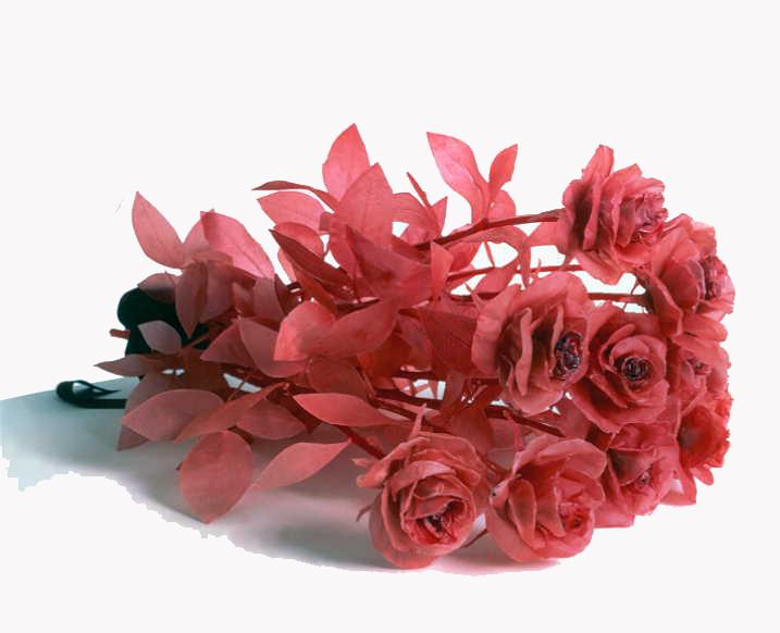 Keith Edmier, A Dozen Roses, 1998